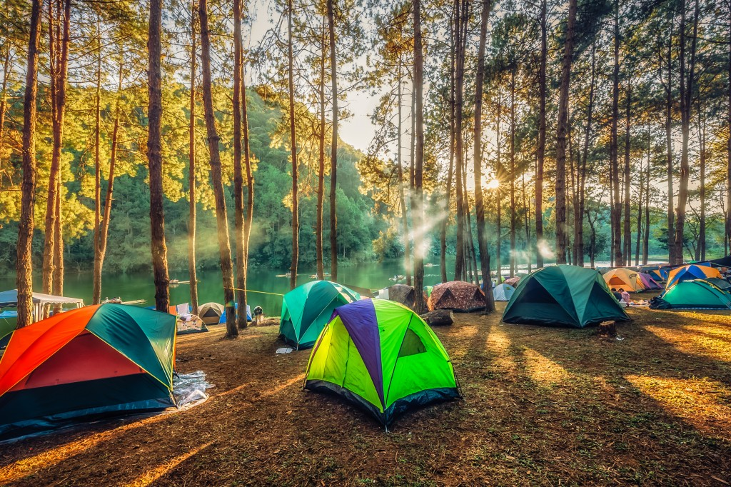 camp site with tents
