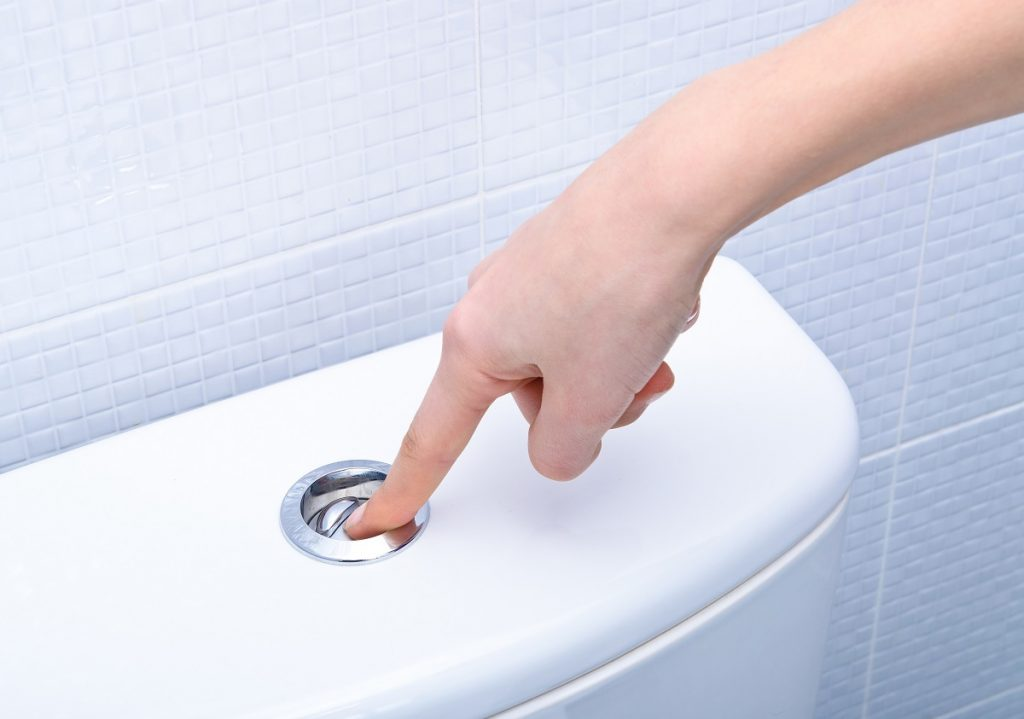 person flushing the toilet bowl