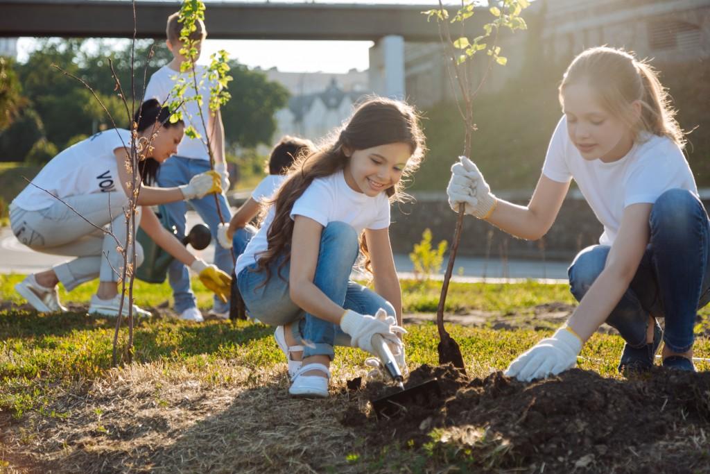 Volunteers tree planting