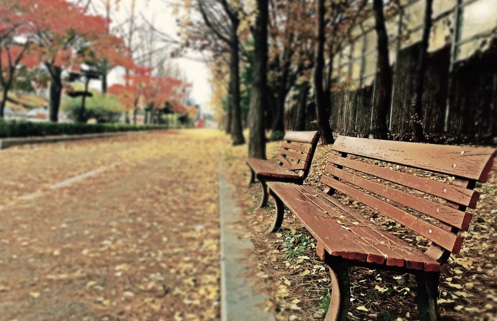 empty bench in campus