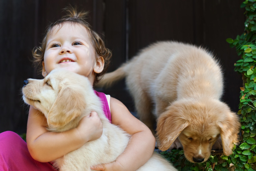 kid with puppies